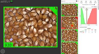 Vol.07 穀物検査